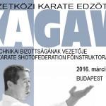 KAGAWA 2016_0300600